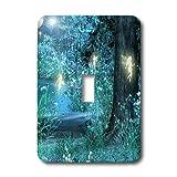 3dRose LLC lsp_17943_1 Fairy Night Magic - Single Toggle Switch