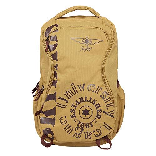 Skybags Skater 02 Laptop Backpack (Brown)