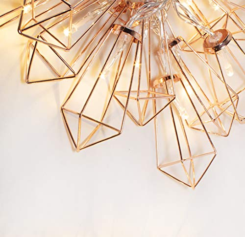 LuxLumi Diamonds are Forever Rose String Lights Gold & Wire Caged, Batteries Included Soft White 20 LED for Bedroom, Living Room, Home Décor, Party, Bridal Shower & Baby Shower (10.5FT)