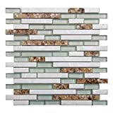 5-Pieces Decorative Glass Tile Geniune Shell and Conch Mosaic Tile for Kitchen Backsplashes