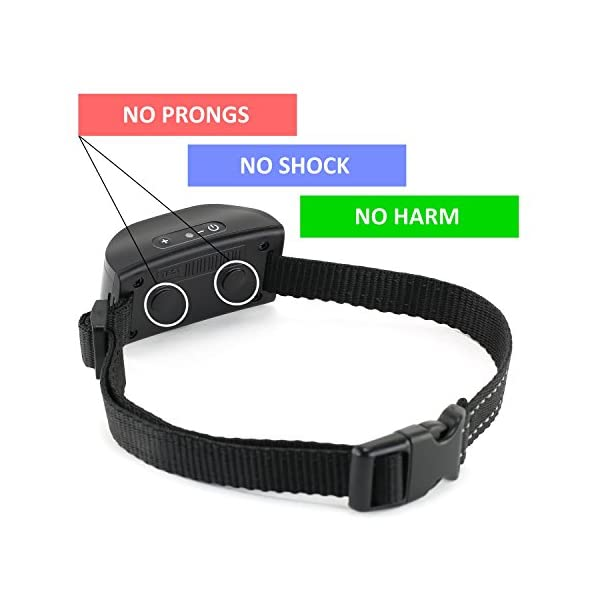 eXuby Friendliest Bark Collar for Small Dogs – No Prongs, No Shock & No Harm – Only Sound & Vibration – Stay in Control with 7 Levels of Intensity – Rechargeable – Most Humane No Bark Collar