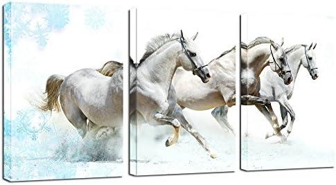 Amazon.com: Sea Charm - Modern 3 Panels Wall Painting, Running White ...