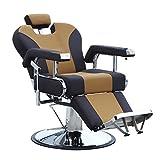 Walcut Hydraulic Recline Barber Chair Salon Shampoo Beauty Spa Equipment