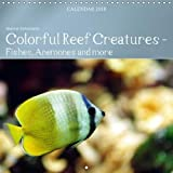 Colorful Reef Inhabitants - Fishes, Anemones and More 2018: Tropical Reefs Provide a Wide Variety of Animals and Colors (Calvendo Animals)