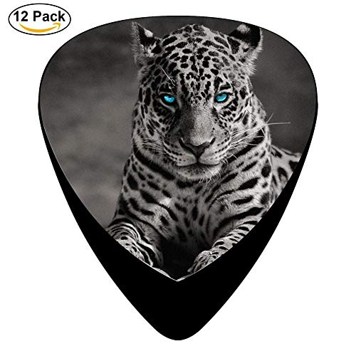 (Tiger Blue Eye Celluloid Electric Guitar Picks 12-pack Plectrums For Bass Music Tool)