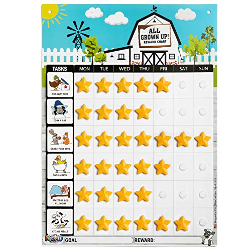 Playco Magnetic Reward Chart for Kids - Chores, Behaviors, Responsibilities, Routines - 11 X 15.5 Inches - A Must Have for Your Parenting Toolkit