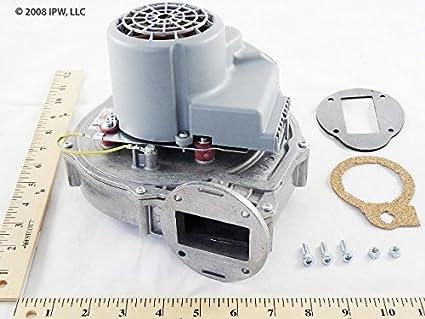 Weil McLain Product 383500360: Industrial Pumps: Amazon.com ...