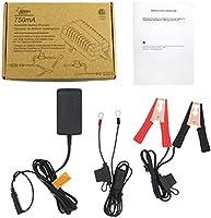 Amazon.com: Cargador de batería de 12 V - 750 mA para coches ...
