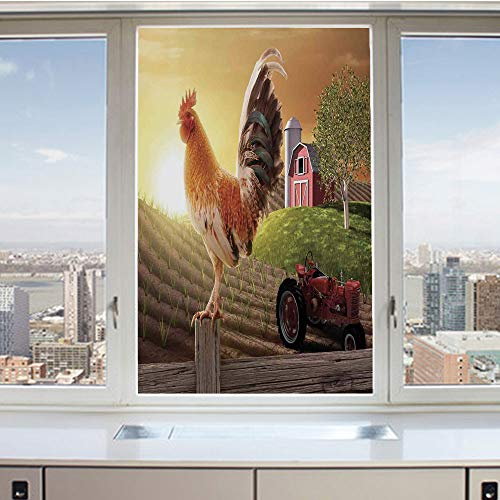 3D Decorative Privacy Window Films,Farm Barn Yard Image Kitchenware and Home Decor Rooster Early Bird Natural Sunrise,No-Glue Self Static Cling Glass film for Home Bedroom Bathroom Kitchen Office 17.5