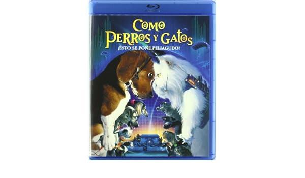 Amazon.com: Como Perros Y Gatos (Blu-Ray) (Import Movie) (European Format - Zone B2) (2010) Varios: Movies & TV