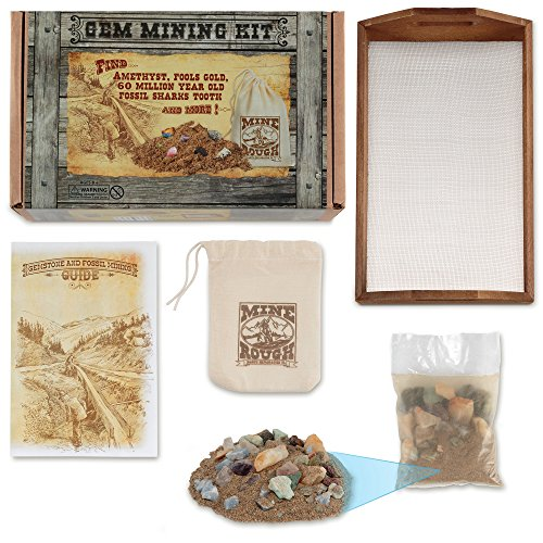 Gem Mining Kit with Wood Sifter, Mine Rough, Rock and Mineral Chart with Amethyst, Fools Gold and Sharks Tooth-