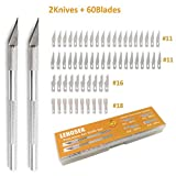 Art Knife, Lehosek Precision Art Carving Knife 2 Handles with 60 Blades Craft Cutting Kit for Art Creation (2Knives+60blades)