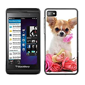 TopCaseStore / la caja del caucho duro de la cubierta de protección de la piel - Chihuahua Roses Valentine Dog Pet - Blackberry Z10