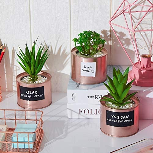 Artificial Succulent Plants for Women Desk – Fake Succulent Plant Set – Office Decor Faux Succulents in Rose Gold Pots – Mini Succulent Decor for Bedroom Bathroom Bookshelf Dorm Accessories 3-Pack 51TnfmO5ETL
