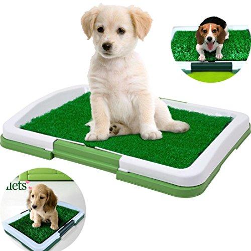 Iusun Pet Mat, Dog Potty Trainer Grass Pee Pad for Pet Cat Puppy Indoor Outdoor Patch Restroom (Green)