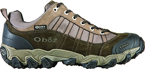 Pictures of Oboz Men's Tamarack BDry Hiking Shoe Bungee 8 W US 8