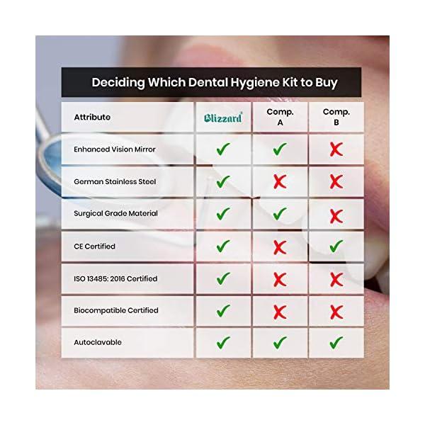 Blizzard – Kit Dentaire pour Remouer Plaques 4pcs: Miroir, Instrument Périodentaire, Grattoit faucille et Burlin de…