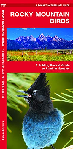 Rocky Mountain Birds: A Folding Pocket Guide to Familiar Species (Wildlife and Nature Identification)