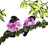 TWO PINK ROBINS SITTING ON A MOSS BRANCH PRINT PRINTED ON PREMIUM 100% RAG (COTTON) WHITE 140LLB ARCHIVAL PAPER