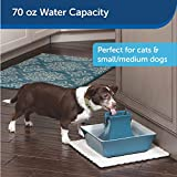 PetSafe Cat and Dog Water Fountain - Automatic