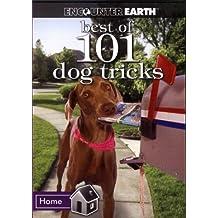 The Best of 101 Dog Tricks- DVD