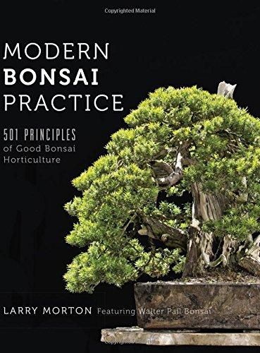 modern-bonsai-practice-501-principles-of-good-bonsai-horticulture