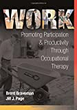 Work: Promoting Participation & Productivity Through Occupational Therapy