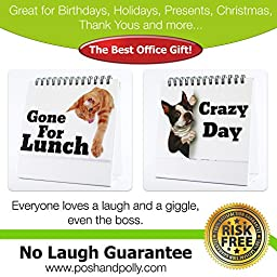Funny Office Gifts - The Best Office Gift For Coworkers, Business Gifts, Gag Gifts & Office Desk Toys - Guaranteed Laughs - 29 Different Fun & Practical Flip-over Messages.