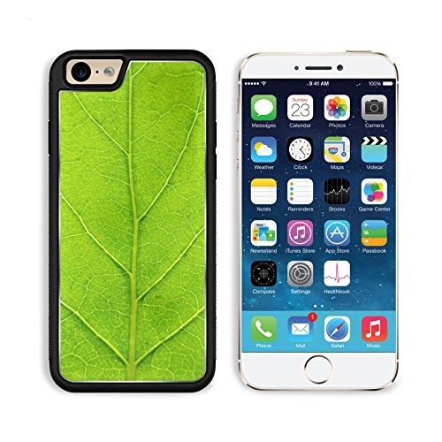 MSD Premium Apple iPhone 6 iPhone 6S Aluminum Backplate Bumper Snap Case leaf texture ()