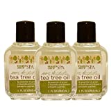 Trader Joe's Spa Australian Tea Tree Oil, 1 FL OZ (Pack of 3)