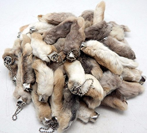 Lot of 25 Natural Color Real Authentic Lucky RABBITS for sale  Delivered anywhere in USA