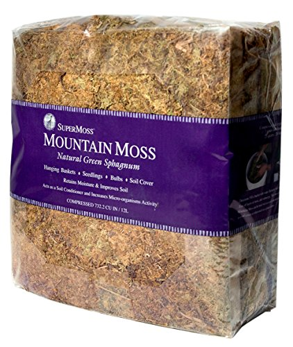 Topiary Reindeer (SuperMoss (23825) Mountain Moss Dried, Natural, 5lb Small Bale)