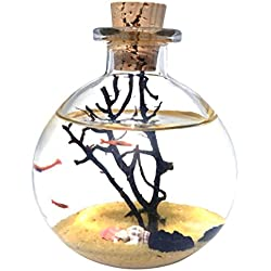 SHRIMP BUBBLE Ecosystem Kit