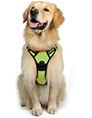 Rabbitgoo Front Range Dog Harness Adjustable Outdoor Pet Vest with Handle Easy Control for Small Medium Large Dogs and Durable Material (Large, Green)