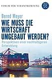 Wie muss die Wirtschaft umgebaut werden?: Perspektiven einer nachhaltigeren Entwicklung (Forum für Verantwortung, Band 17278)