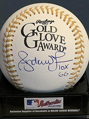 Andruw Jones Atlanta Braves 10 X Gg Autographed Signed Gold Glove Oml Baseball - Certified Signature