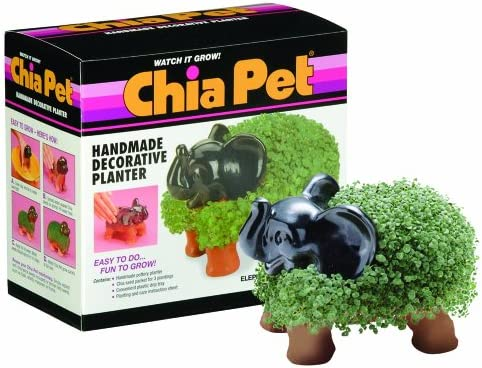 Chia Elephant: Amazon.es: Jardín
