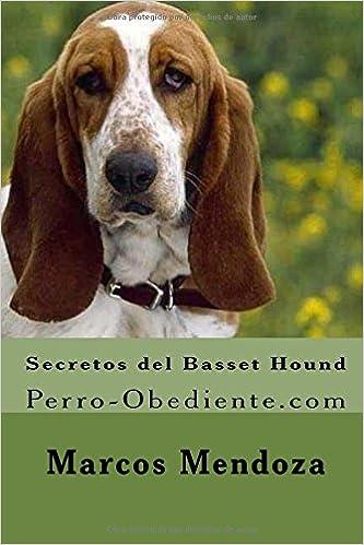 Lee Secretos Del Basset Hound Perro Obediente Com En Línea Ml