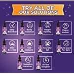 Jackson Galaxy: Peacemaker (2 oz.) - Pet Solution - Promotes Sense of Community - Can Reduce Aggression, Tension, Jealousy - All-Natural Formula - Reiki Energy 12
