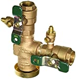 Watts 0388001 Pressure Vacuum Breaker with QT Turn Ball Valves, 3/4''