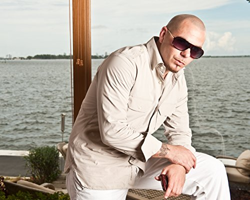 pitbull the singer - 5