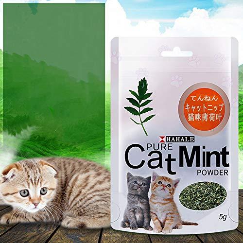 dxS8hhuo Pet Snack Cat Mint Powder Natural Catnip Pet Kitten Mouth Cleaning Flavor Treats 5g/Pack