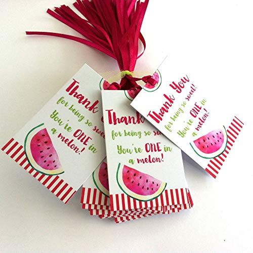 Watermelon Thank You Favor Tags - Children Birthday Baby Shower Summer Party - Set of 24