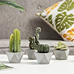 MyGift Assorted Artificial Cactus Plants in Geometric Cement-Gray Pots, Set of 4