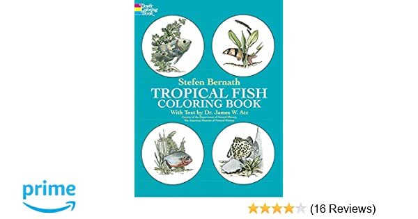 Tropical Fish Coloring Book (Dover Nature Coloring Book): Stefen ...