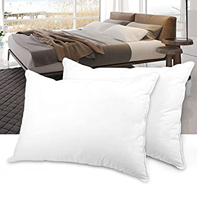 LANGRIA Pack of 2 Down Plush Soft Alternative Bed Pillows with Allergy Free 100% Cotton Shell, Queen Size, White