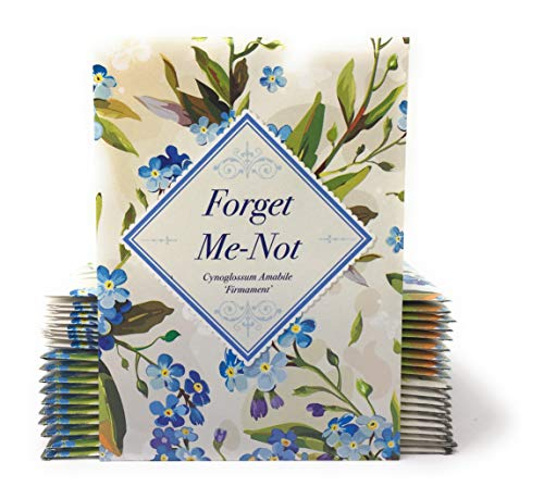 - Vintage Look - Individual Forget Me Not Flower Seed Packet Favors - Ready to Give - Pack of 20