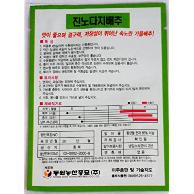 Cabbage Seeds Korea. 2 Pack(4grams-each): Toys & Games