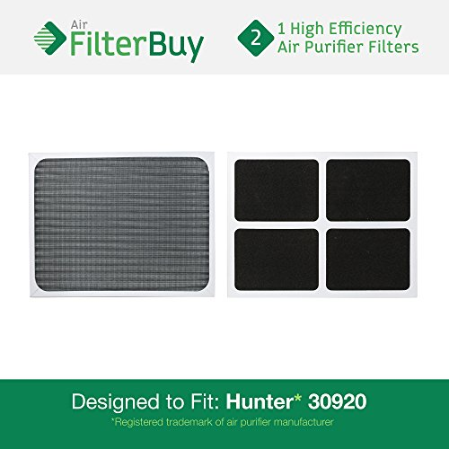 2 - Hunter 30920 30905 Air Purifier Replacement Filters. Designed by FilterBuy to fit Hunter Models 30050, 30055, 30065, 37065, 30075, 30080 & 30177.