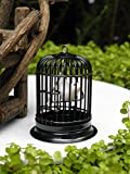 Product review for Miniature Dollhouse Fairy Garden Accessories Black Metal Bird Cage Bird
